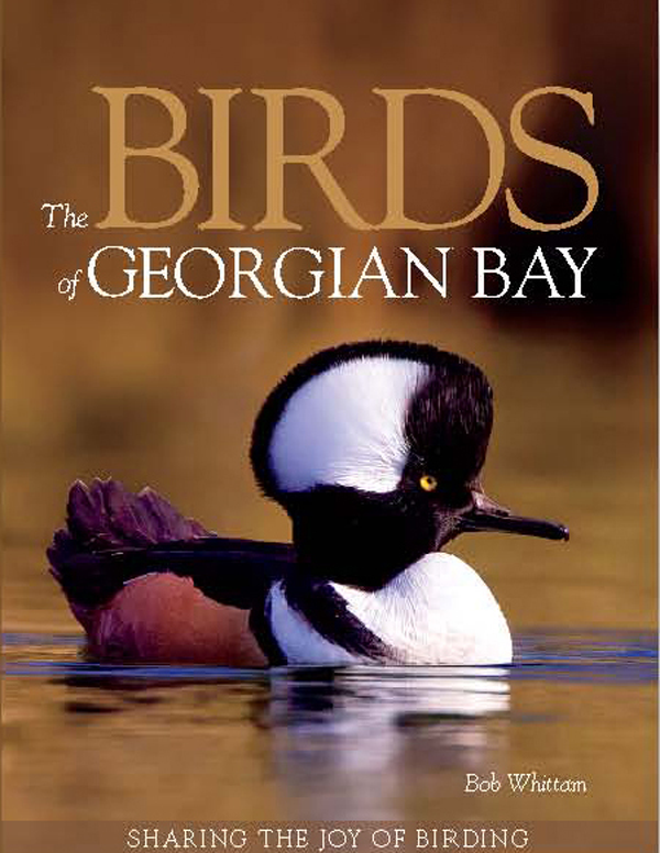 Buy Now Birds of Georgian Bay Book