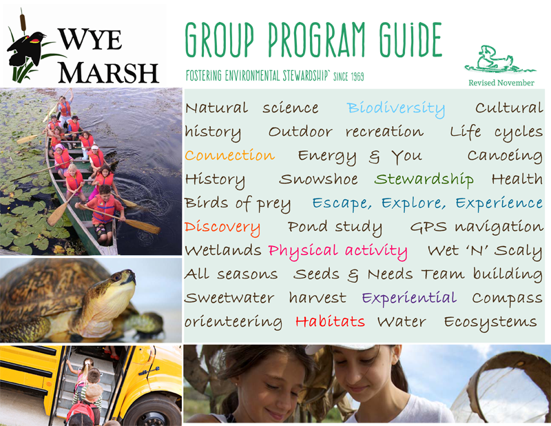 key concepts for understanding curriculum marsh pdf
