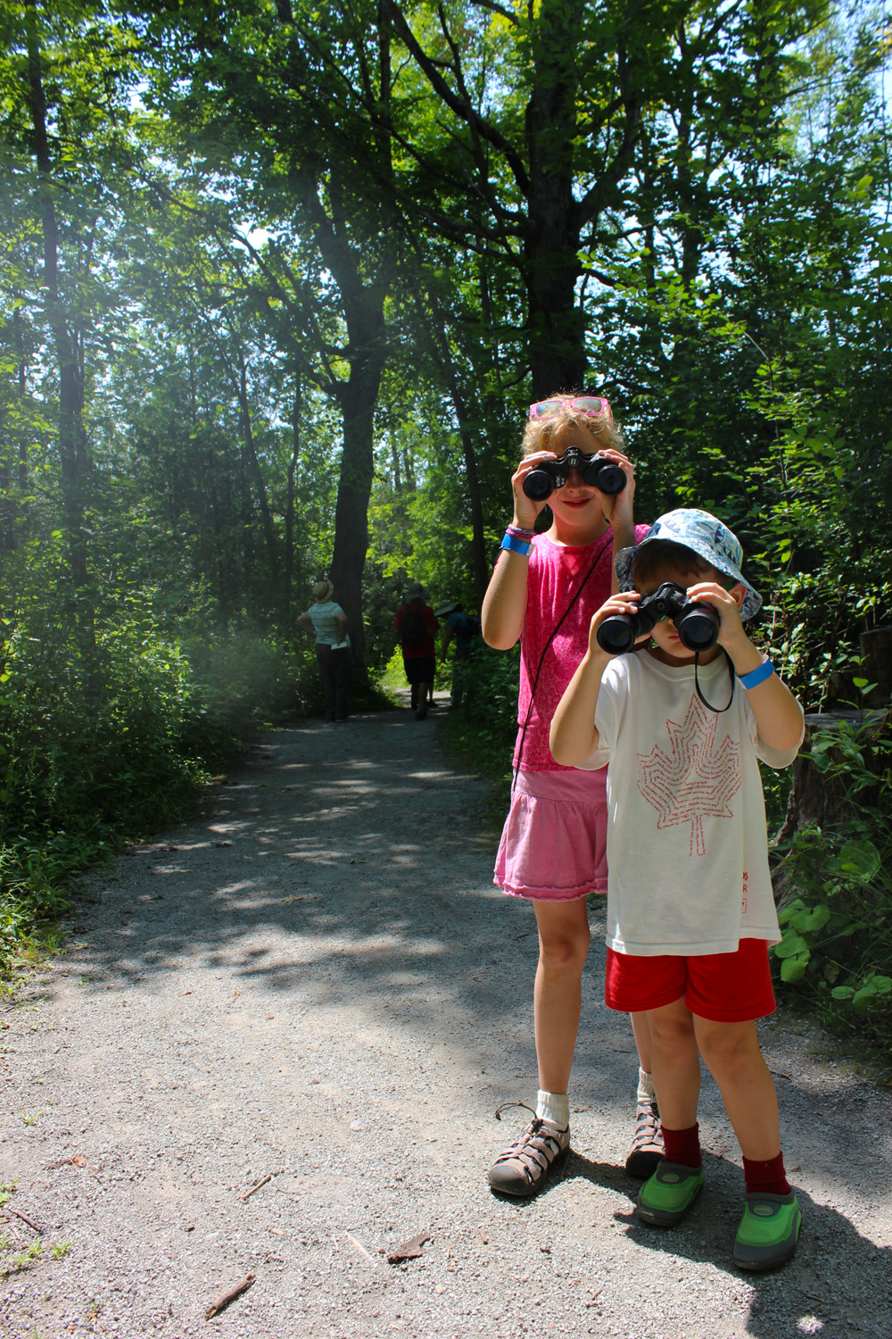 Children Birdwatching