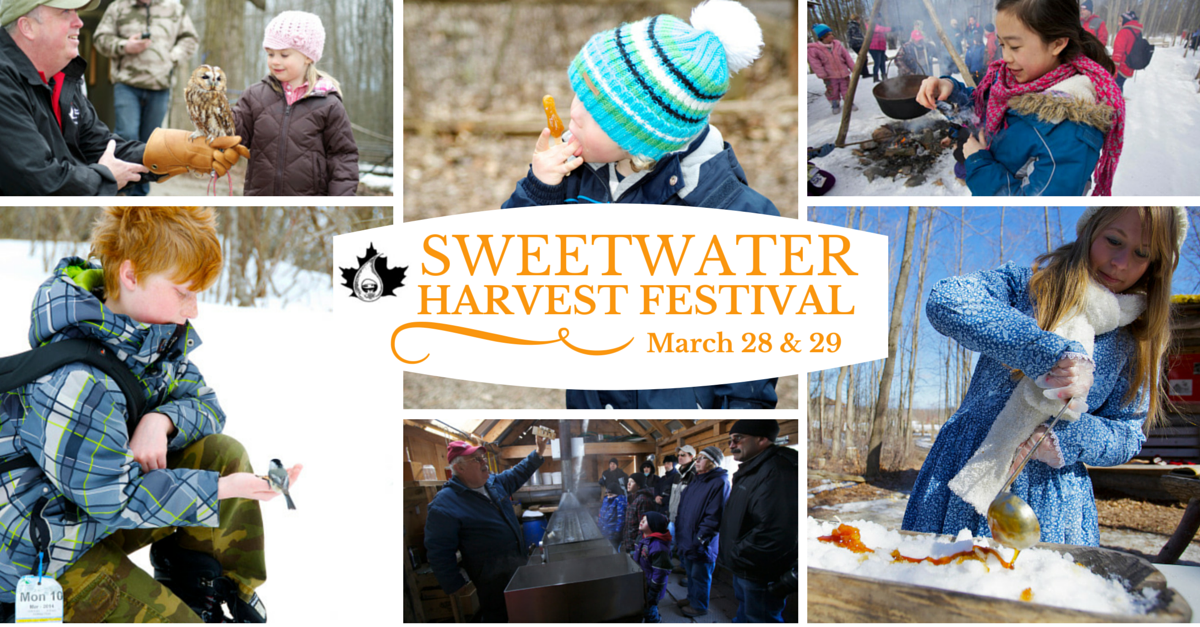 Sweetwater Harvest Festival